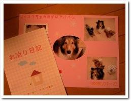 写真と日記