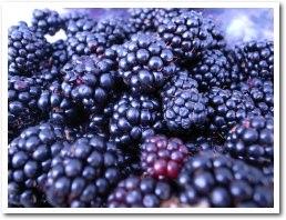 blackberry090912_2.jpg