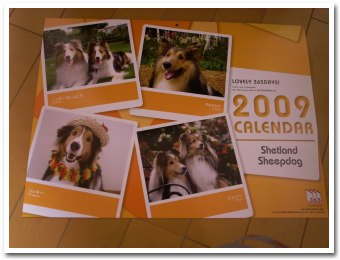 calendar081203.jpg