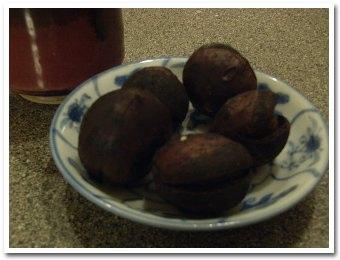 chestnut061030.jpg