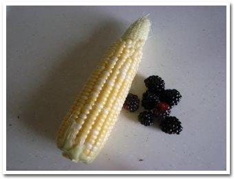 corn090822.jpg