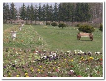 garden090503_2.jpg