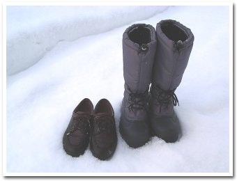 お散歩用の靴