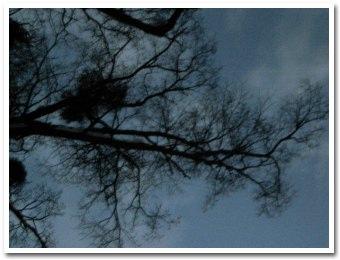 sky071219.jpg
