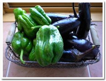vegetable090809.jpg