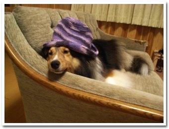 帽子まで紫?
