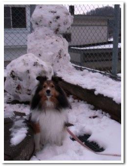 雪ダルマ好き!