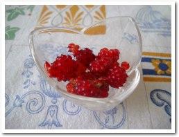 berry050816.jpg