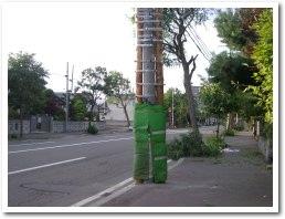 tree040909.jpg